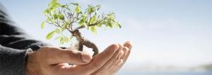 sostenibilidad-ahorro-confort